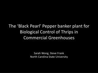 The 'Black Pearl' Pepper banker plant for Biological Control of  Thrips  in Commercial Greenhouses