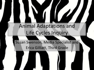 Animal Adaptations and  Life Cycles Inquiry
