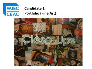 Candidate 1  Portfolio (Fine Art)