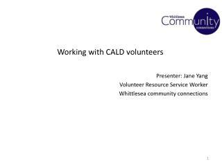 Working with CALD volunteers