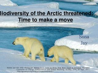 Biodiversity  of the  Arctic threatened: Time to make a move