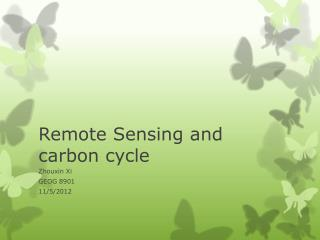 Remote Sensing and carbon cycle