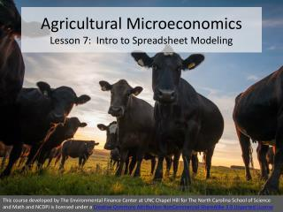 Agricultural Microeconomics Lesson  7 :  Intro to Spreadsheet Modeling