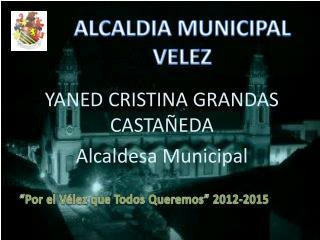 ALCALDIA MUNICIPAL VELEZ