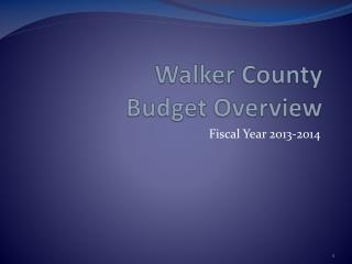 Walker County Budget Overview