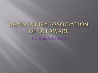 Brain Injury Association of Delaware