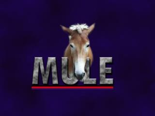 mule multiple language environment  an environment for interpreter-based projects for the programming languages course