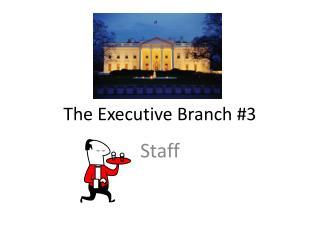 The Executive Branch #3