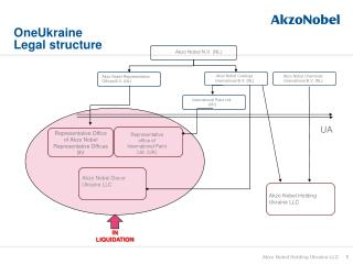 OneUkraine Legal structure