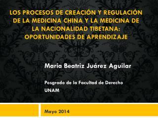 Los  procesos de creación y regulación de la Medicina China y la Medicina de la Nacionalidad Tibetana: Oportunidades de