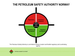 THE PETROLEUM SAFETY AUTHORITY NORWAY