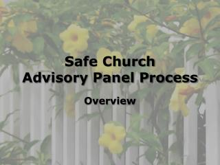 Safe Church  Advisory Panel Process