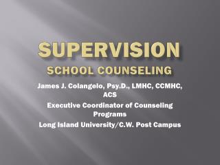 Supervision school counseling