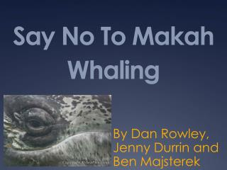 Say No To Makah Whaling