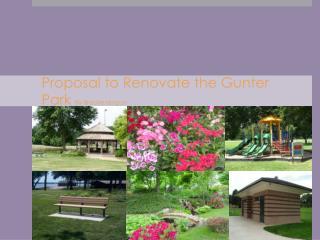 Proposal to Renovate the Gunter Park  By Brooke Hogan
