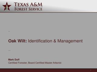Oak Wilt:  Identification & Management