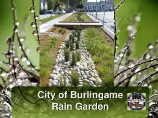 City of Burlingame   Rain Garden