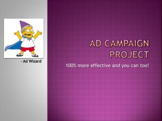 Ad Campaign Project