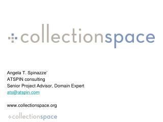 Angela T. Spinazze' ATSPIN consulting Senior Project Advisor, Domain Expert ats@atspin.com www.collectionspace.org
