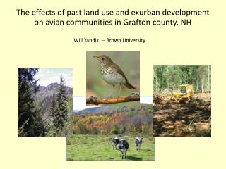 The effects of past land use and exurban development  on avian communities in Grafton county, NH