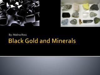 Black Gold and Minerals