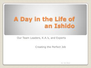 A  Day  in the  Life  of  an Ishido