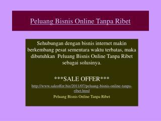 peluang bisnis online tanpa ribet