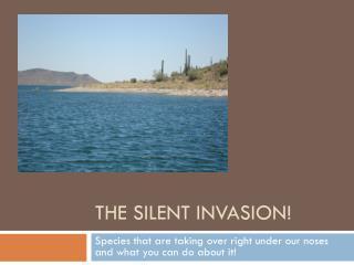 The Silent  I nvasion!