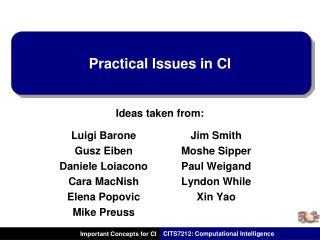 Practical Issues in CI