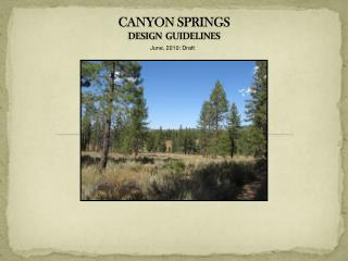 CANYON SPRINGS DESIGN  GUIDELINES