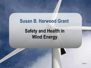Safety and Health in Wind Energy
