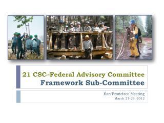 21 CSC–Federal Advisory Committee  Framework Sub-Committee