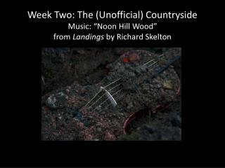 """Week Two: The (Unofficial) Countryside Music: """"Noon Hill Wood""""  from  Landings  by Richard Skelton"""
