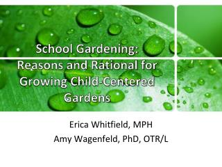 School Gardening:  Reasons and Rational for Growing Child?Centered Gardens