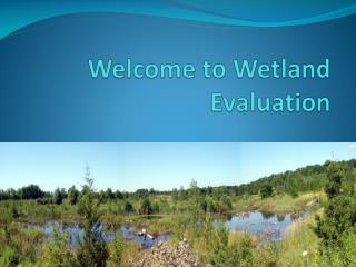 Welcome to Wetland Evaluation