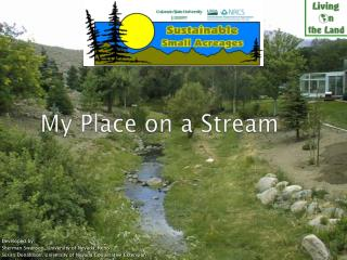 My Place on a Stream