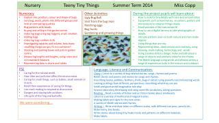 Nursery                    Teeny Tiny Things            Summer Term 2014                   Miss Copp