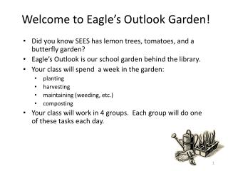 Welcome to Eagle�s Outlook Garden!