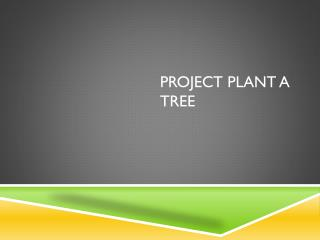 Project Plant  a Tree
