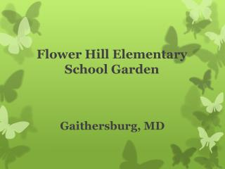 Flower Hill Elementary School Garden