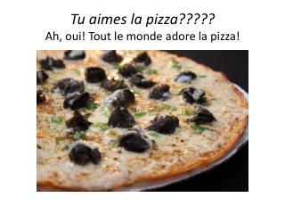 Tu aimes  la pizza????? Ah,  oui ! Tout le monde adore la pizza!