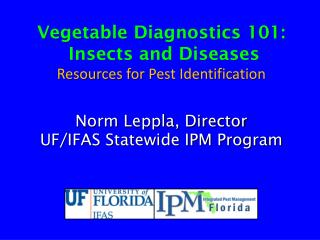 Vegetable  Diagnostics 101 : Insects and  Diseases Resources for  Pest Identification