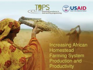 Increasing African Homestead Farming System Production and Productivity