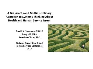 David X. Swenson PhD LP Terry Hill  MPH Brandon Olson, PhD St. Louis County Health and Human Services Conference, 2013