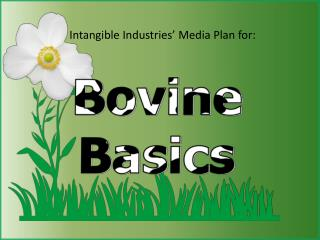 Intangible Industries' Media Plan for: