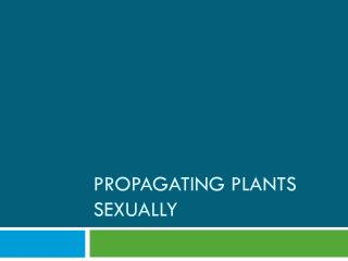 Propagating Plants Sexually