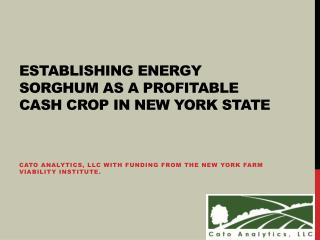 Establishing Energy Sorghum as a Profitable Cash Crop in New York State