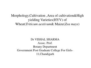 Morphology,Cultivation  ,Area of  cultivation&High  yielding Varieties(HYV) of   Wheat( Triticum aestivum & Maize( Zea
