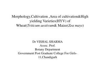 Morphology,Cultivation  ,Area of  cultivation&High  yielding Varieties(HYV) of   Wheat( Triticum aestivum & Maize( Zea