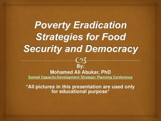 Poverty Eradication Strategies for Food Security and Democracy
